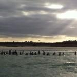 Marche aquatique de samedi