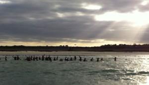 Marche aquatique du 16 novembre