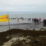Marche aquatique déguisée au profit du Téléthon