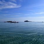 Sorties en kayak de mer en juillet et août