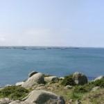 Venez participer aux différentes activités liées au bord de mer